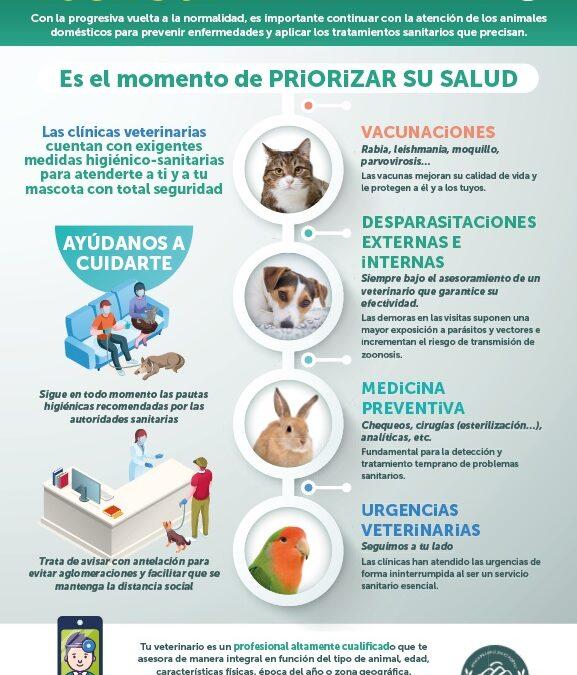 «Vuelve a la normalidad. Vuelve al veterinario».