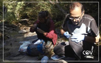 Ordesa estudia la cría en cautividad de la rana pirenaica por la amenaza de un virus