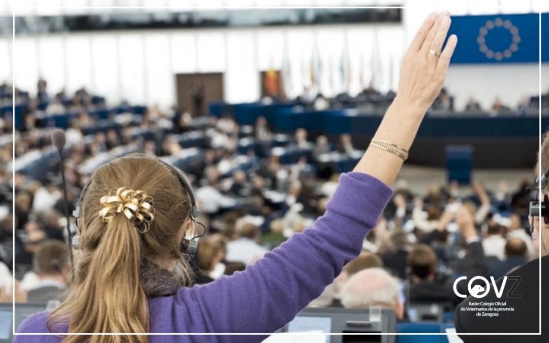 El Parlamento Europeo se muestra a favor de acabar con las jaulas para animales