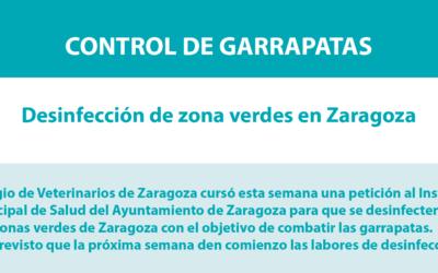 La próxima semana se desinsectarán las zonas verdes en Zaragoza para controlar las garrapatas