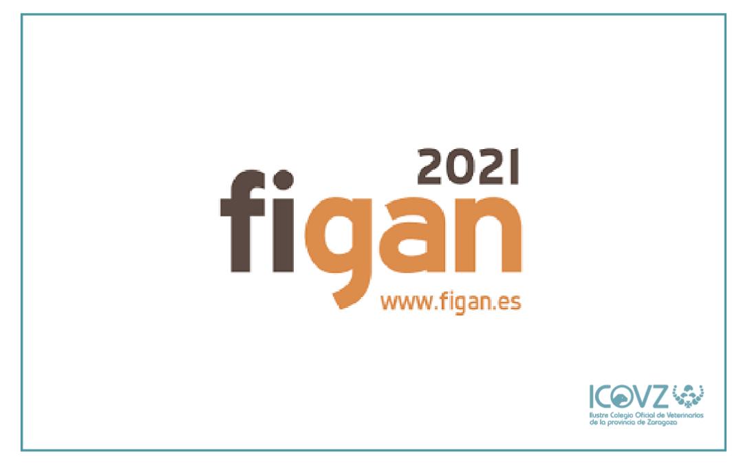 Consigue tu entrada para FIGAN 2021