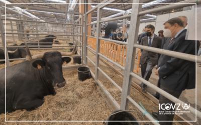 Luis Planas anuncia la consulta pública de la primera norma de ordenación de las granjas de ganado vacuno en España