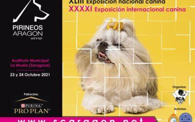 El Colegio de Veterinarios de Zaragoza participó en la XLIII Exposición Nacional Canina en Aragón